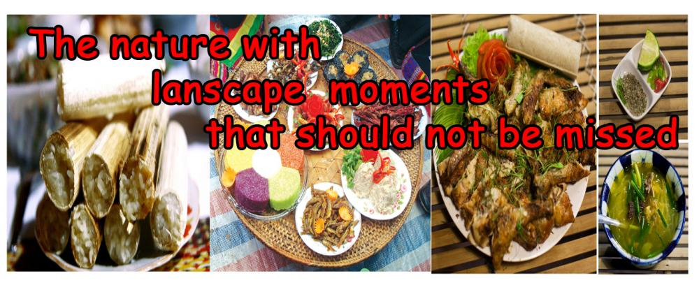 VIETNAMESE CUISINE – DON'T TRY, REGRET !